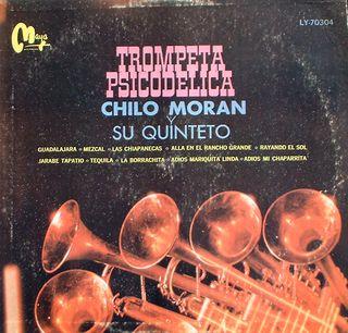 Chilomaorantrompeta